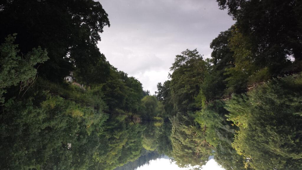 River Liffey, Kildare (2016)